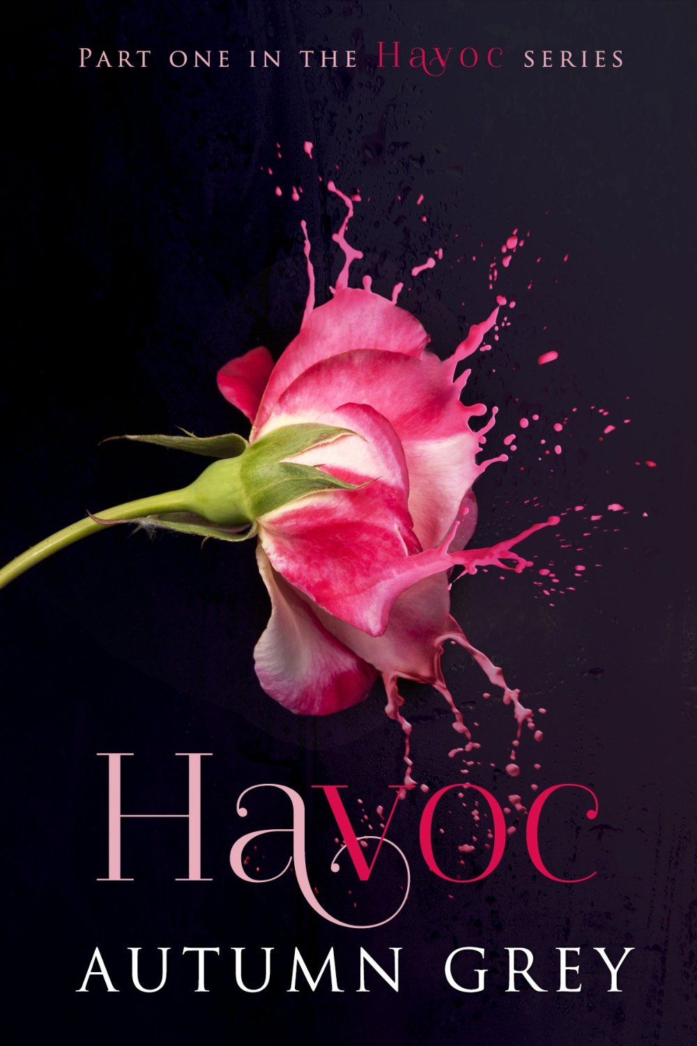 Havoc (Havoc #1) by Autumn Grey Amazon Kindle Cover